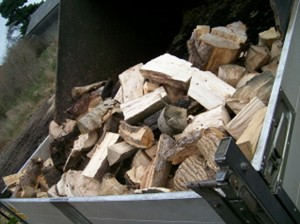 Seasoned fire wood