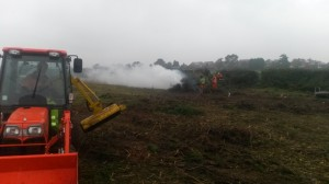 gorse clearing 1