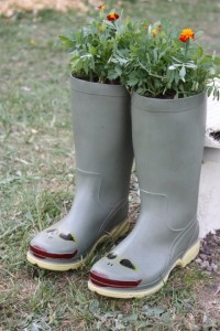 Planted wellies