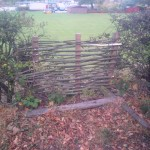 Hazel panel, hedge fill-in 3 (Small)