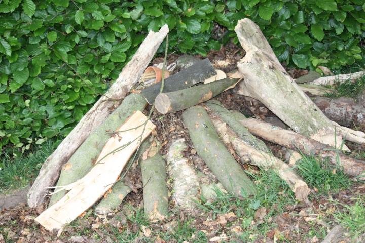 Outdoor Wildlife Areas/Classrooms | Acme Tree Services