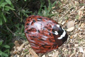 Painted stones garden creatures