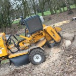 Stump grinding - at Golf Club 1 (Small)
