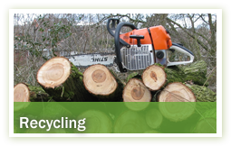 arboriculture-recycling