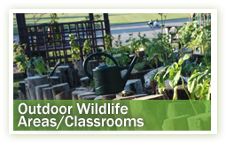 conservation-environment-outdoor-wildlife-areasclassrooms