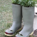 Planted wellies.