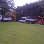 Large hedge reduction & trim (Small)