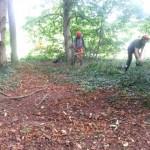 Forest School - work in progress