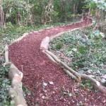 Forest school meandering pathways