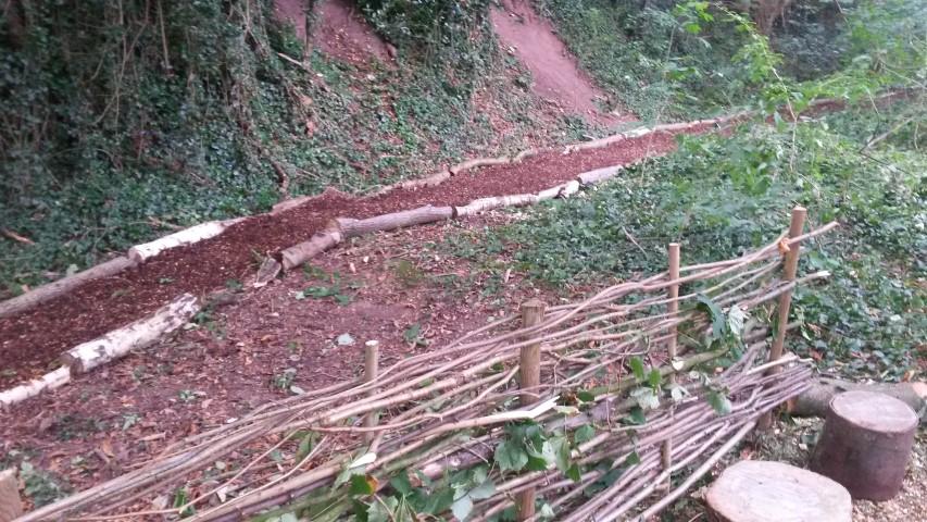 Forest School - meandering pathway & dividing hazel hedge